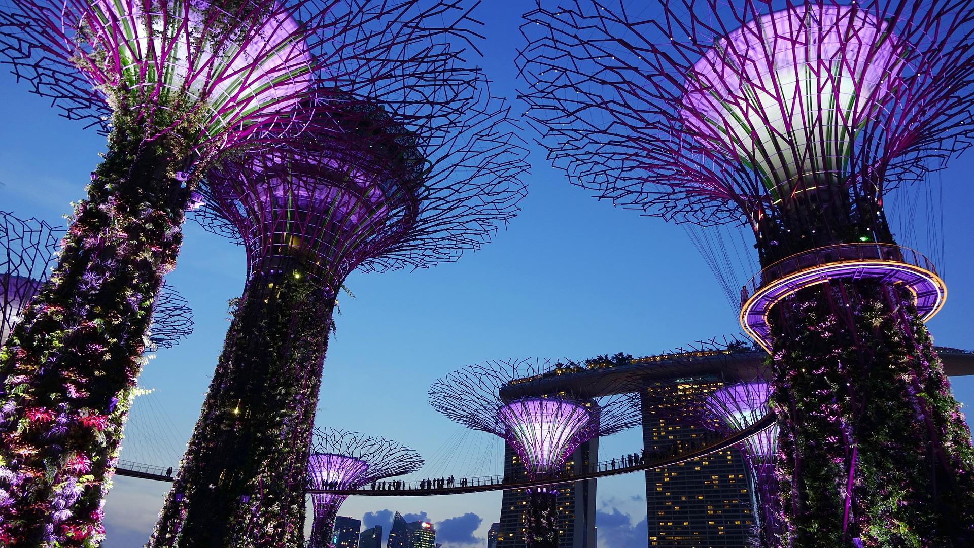 astuce voyage singapour